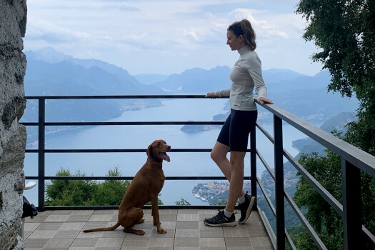 Views over </br>Lago di Como.